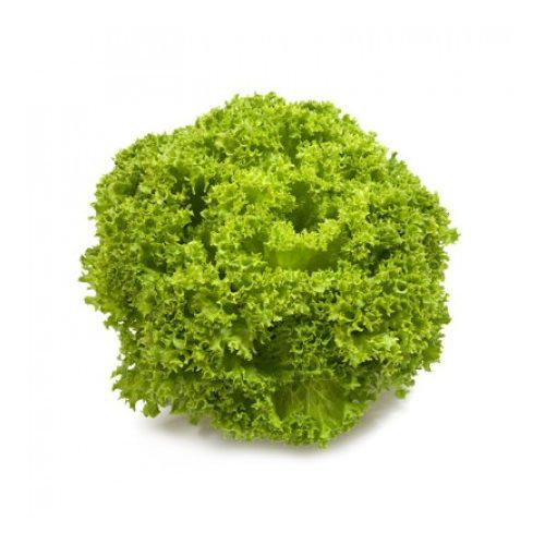 Fejes saláta Linaro 1000 szem RZ