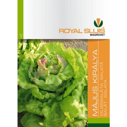 Saláta Május Királya 2,5 g RS