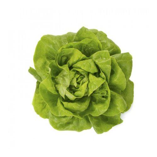 Fejes saláta Rivalda 1000 szem RZ